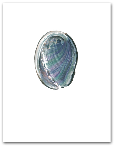 Abalone Interior Nacre Small Vertical Larger