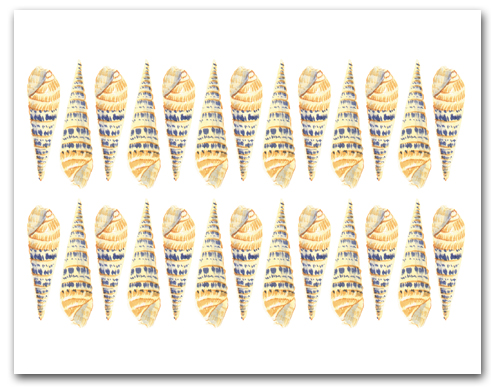 Auger Yellow Blue Rows Large Horizontal Larger