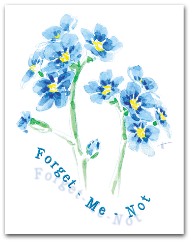 Blue Forget-Me-Not Large Flower Cluster Larger