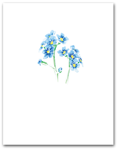 Blue Forget-Me-Not Small Flower Cluster Larger