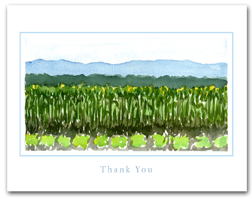Field Planted Vegetables Crops Mountains Background Large Thank You Horizontal Larger