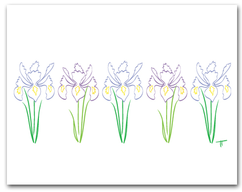 Five Simple Line Drawing Flag Iris Row Larger