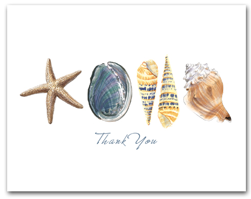 Sea Star Abalone Augers Whelk Row Thank You Horizontal Larger