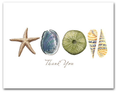 Sea Star Abalone Green Sea Urchin Augers Row Thank You Horizontal Larger