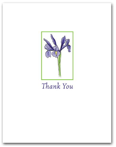 Small Blue Flag Iris Thank You Larger