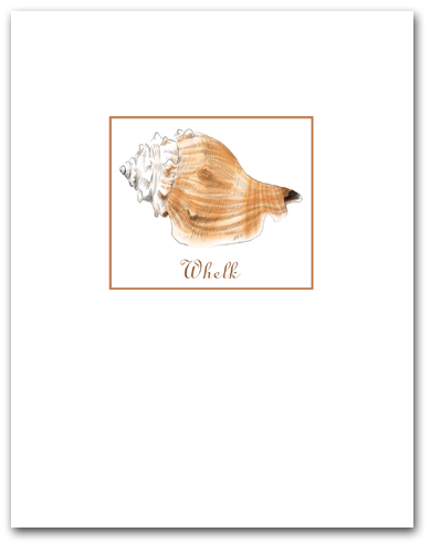 Whelk White Tan Small with Name Vertical Larger