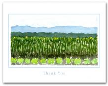 Field Planted Vegetables Crops Mountains Background Large Thank You Horizontal