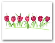 Seven Red Tulips Row